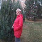 Светлана, 51 лет, Тольятти, Россия